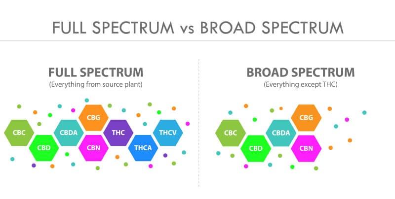 full spectrum cbd vs broad spectrum cbd diagram